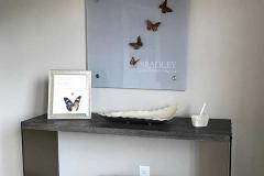 Funeral Home 0000108 Bradley Brough Dangler Summit NJ Home Photo Gallery Bbd 9