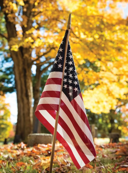 Funeral Home and Cremations 0000019 Flagveteran
